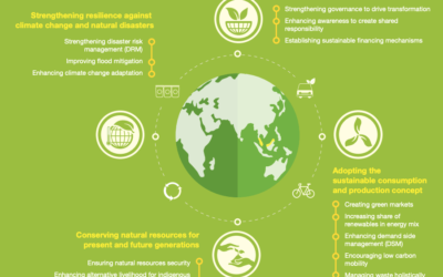 The National Action Plan on Sustainable Production and Consumption up to 2020, with a vision to 2030